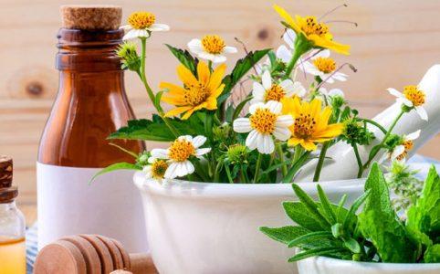 Heilpflanzen und Tinkturen